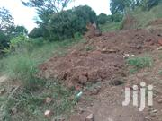 The Owner Of This 200 Acres Is Very Sick Preffered India For Operation | Land & Plots For Sale for sale in Central Region, Kampala