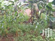 Plot For Sell In Namanve Private Mailo With Land Title Plot Size Is | Land & Plots For Sale for sale in Central Region, Kampala