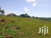 100x100 Titled Plot In Buloba Bukasa Road | Land & Plots For Sale for sale in Central Region, Wakiso