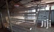 Chicken Layer Cage | Farm Machinery & Equipment for sale in Nothern Region, Kotido