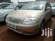 Toyota Allex 2000 Gold | Cars for sale in Central Region, Kampala