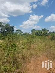 Five Acres On Quick Sale In Gomba Kiriri  Just 1.5 Km Off Tarmac Title | Land & Plots For Sale for sale in Central Region, Kampala