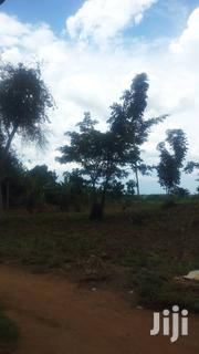 250 Acres At Tororo District Near Tororo Cement Factory | Land & Plots For Sale for sale in Central Region, Kampala