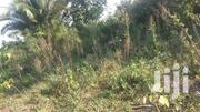 350 Acres Of Farmland In Bukakata Masaka | Land & Plots For Sale for sale in Central Region, Masaka