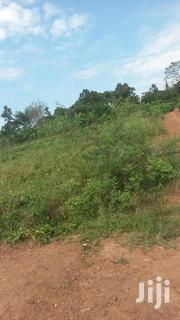 100 Acres Of Farmland In Kaliisizo | Land & Plots For Sale for sale in Central Region, Masaka