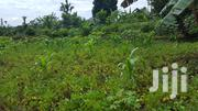 Land In Kitukutwe Kiira 50*130 For Sale | Land & Plots For Sale for sale in Central Region, Kampala