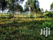 Land In Nyamitsindo Isingiro For Sale | Land & Plots For Sale for sale in Central Region, Kampala