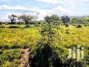 1 Square Mile Nsara Kiruhura Land For Sale | Land & Plots For Sale for sale in Central Region, Kampala