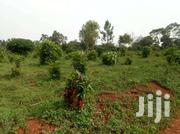 Nakasajja 50/100fts For Sale And Ready Land Title | Land & Plots For Sale for sale in Central Region, Kampala