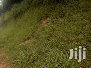 161 Titled Acres In Maddu Gomba | Land & Plots For Sale for sale in Central Region, Mpigi