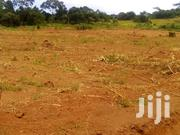 Money Needed Urgently 11acres On Sale Located At Bombo Kiyana Villa... | Land & Plots For Sale for sale in Central Region, Kampala