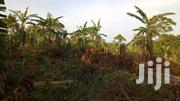 Good 2 Acres Of Land  In MUKONO_KISOGA Close To Tarmac Each At 35m | Land & Plots For Sale for sale in Central Region, Mukono