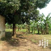 Two Acres Of Private Mile Land For Sale In Namugongo At 100M Per Acre | Land & Plots For Sale for sale in Central Region, Kampala