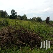 100 Acres Of Land For Sale In Kayunga Baale | Land & Plots For Sale for sale in Central Region, Kampala