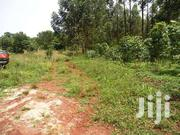 Land For Sale In Nakawuka Off Entebbe Road For Sale With Land Title | Land & Plots For Sale for sale in Western Region, Kisoro