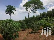 10 Acres Of Land In Kabunyata, Luweero | Land & Plots For Sale for sale in Central Region, Kampala