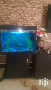 Precious Aquariums | Arts & Crafts for sale in Central Region, Kampala