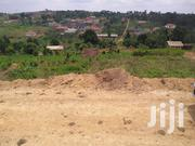 Executive Plots In Namugongo Sonde | Land & Plots For Sale for sale in Central Region, Kampala