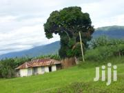 Land In Kikyusa Luwero 50 Acres | Land & Plots For Sale for sale in Central Region, Luweero