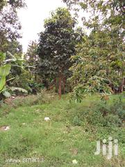 Land In Busunju After Kakiri For Sale | Land & Plots For Sale for sale in Central Region, Kampala