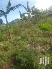 Privately Owned With Ready Land Title | Land & Plots For Sale for sale in Central Region, Mpigi