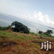 Very Hot 226 Acres Which Flashes The Shores Of Lake Victoria In Kyagwe   Land & Plots For Sale for sale in Central Region, Kampala