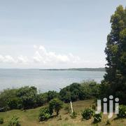 200 Acres Of Land On Sell At 12m Per Acre In Kyagwe (Ssi) Nkokonjeru. | Land & Plots For Sale for sale in Central Region, Kampala