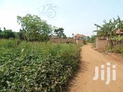 Plots On Sale!! Buwate!! 100x100ft | Land & Plots For Sale for sale in Central Region, Kampala