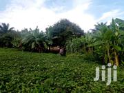 1 Acre And 30 Decimals Of Prime Private Mailo Land At Munyonyo | Land & Plots For Sale for sale in Central Region, Kampala