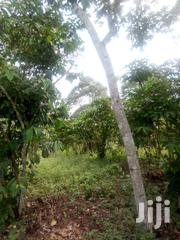 3 Acres Of Land On Sale In Luweero District | Land & Plots For Sale for sale in Central Region, Kampala