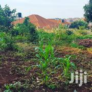 Half Acre On Sale Sae In Kisasi Only | Land & Plots For Sale for sale in Central Region, Kampala