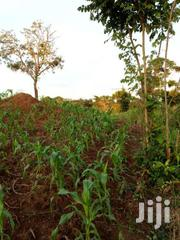 50x100ft Plot In Gayaza 7m | Land & Plots For Sale for sale in Central Region, Kampala