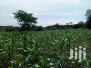 460 Acres Land For Sale In Mityana | Land & Plots For Sale for sale in Central Region, Kampala