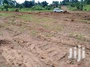 Plot In Gayaza Busukuma Zirobwe Road For Sale | Land & Plots For Sale for sale in Central Region, Wakiso