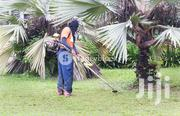 Compound Cleaning Service | Cleaning Services for sale in Central Region, Kampala