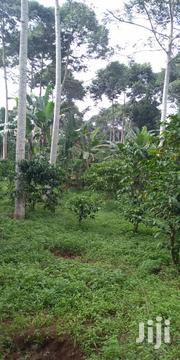 2 Acres Of Land On Sale At A Negotiable Price Of 7 M Per Acre | Land & Plots For Sale for sale in Central Region, Mukono