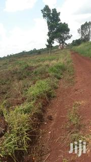 Farmland In Kasana Luwerowe Sale 10 Acres And Above. | Land & Plots For Sale for sale in Central Region, Luweero