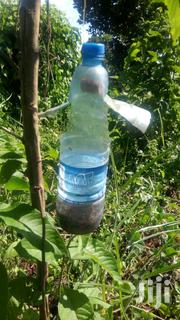 Fruit Fly Traps | Home Accessories for sale in Central Region, Kampala