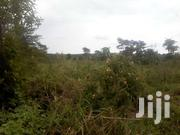 27 Acres Of Titled Land In Kakindu Zigoti 9km From Zigoti Town | Land & Plots For Sale for sale in Central Region, Mpigi
