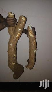 Cassava For Sale | Feeds, Supplements & Seeds for sale in Central Region, Mpigi