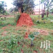 Tutled Plots For Sale In Kakiri Namayumba 50*100ft | Land & Plots For Sale for sale in Central Region, Kampala