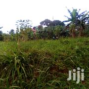 Tittled Commercial Plot For Sale In Kitagobwa | Land & Plots For Sale for sale in Central Region, Kampala