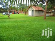 Land In A Prime Area For Sale 5 Minutes To The Airport With A Land Tti | Land & Plots For Sale for sale in Central Region, Kampala