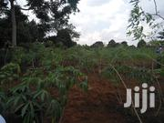Land For Sale Off Entebbe Road | Land & Plots For Sale for sale in Central Region, Kampala