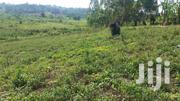 6 Acres Of Titled Land For Sale In Fort Portal.   Land & Plots For Sale for sale in Western Region, Kabalore