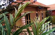 Luxurious New Single Room Is Available For Rent   Houses & Apartments For Rent for sale in Central Region, Kampala