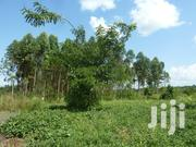 Land In Zirobwe For Sale | Land & Plots For Sale for sale in Central Region, Kampala