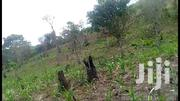 MASAKA-MBARARA ROAD LWENGO: 50 Acres @ 4m/Acre (Negotiable) | Land & Plots For Sale for sale in Central Region, Kampala