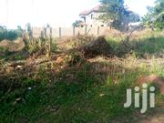 Hot Plot On Quick Sale At A Affordable Price   Land & Plots For Sale for sale in Central Region, Mukono