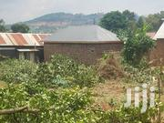 Plot Forcedsale After Munyonyo | Land & Plots For Sale for sale in Central Region, Kampala